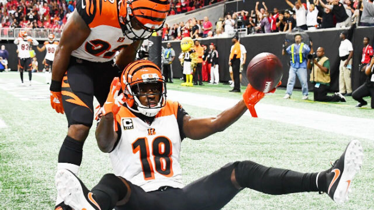 3-1 Bengals showing new ability for big plays
