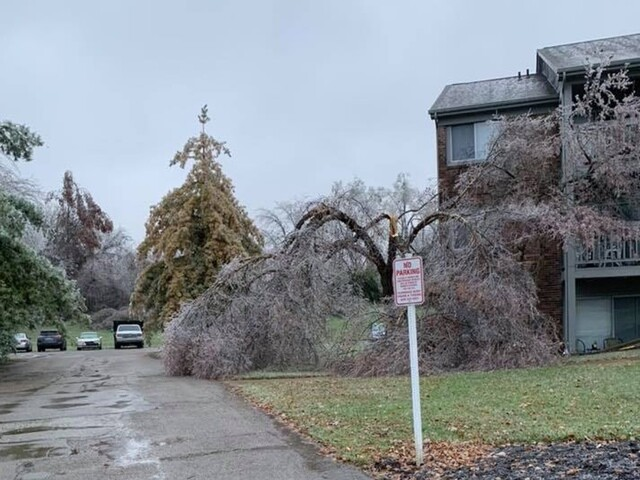 Photos: November ice storm strikes in the Tri-State