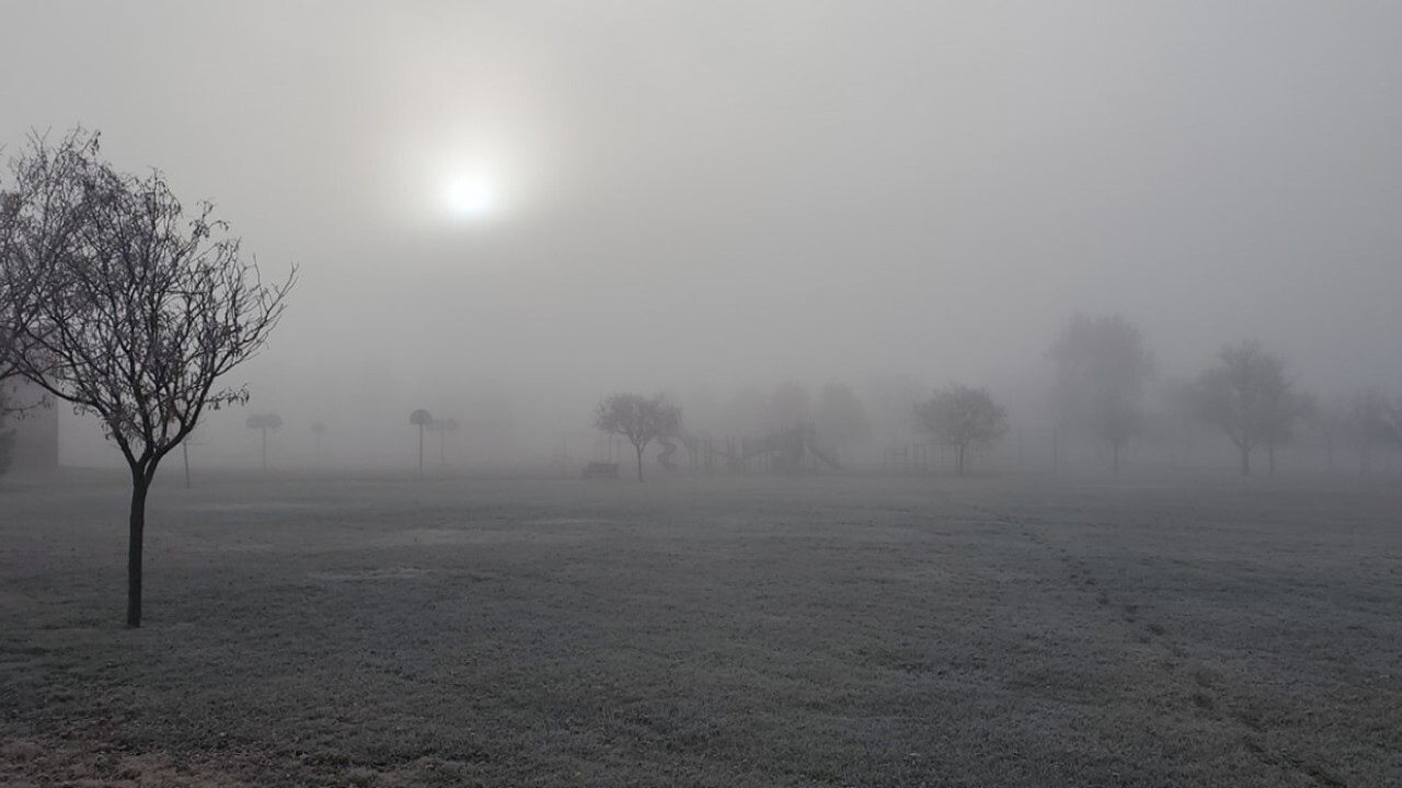 Fog and frost in Pueblo