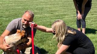 Red Oxx Buy one give one leash donation gets positive response