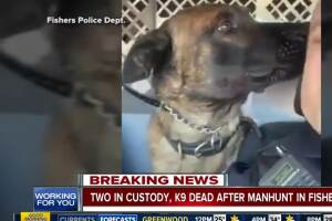 K-9 officer killed during manhunt in Fishers, two suspects in custody
