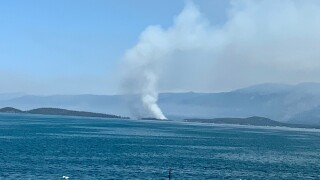 bird island fire 5.jpg