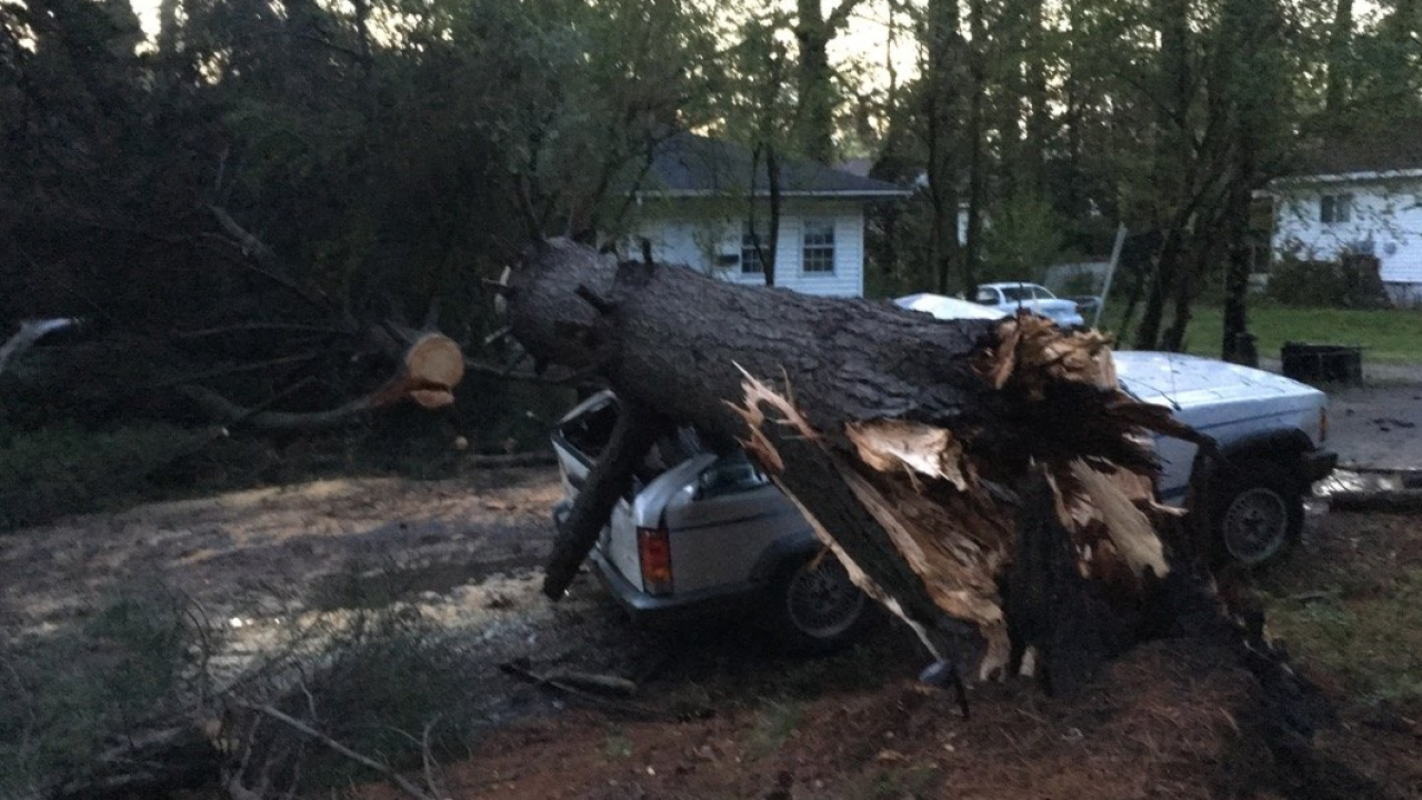Photo gallery: Damage caused by severe weather across coastal Virginia and northeasternN.C.