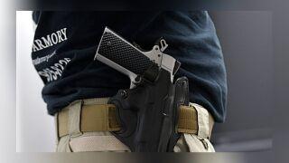 concealed gun_file.jpg