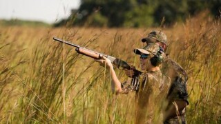 Missouri considering nontoxic shot rules in more hunting areas