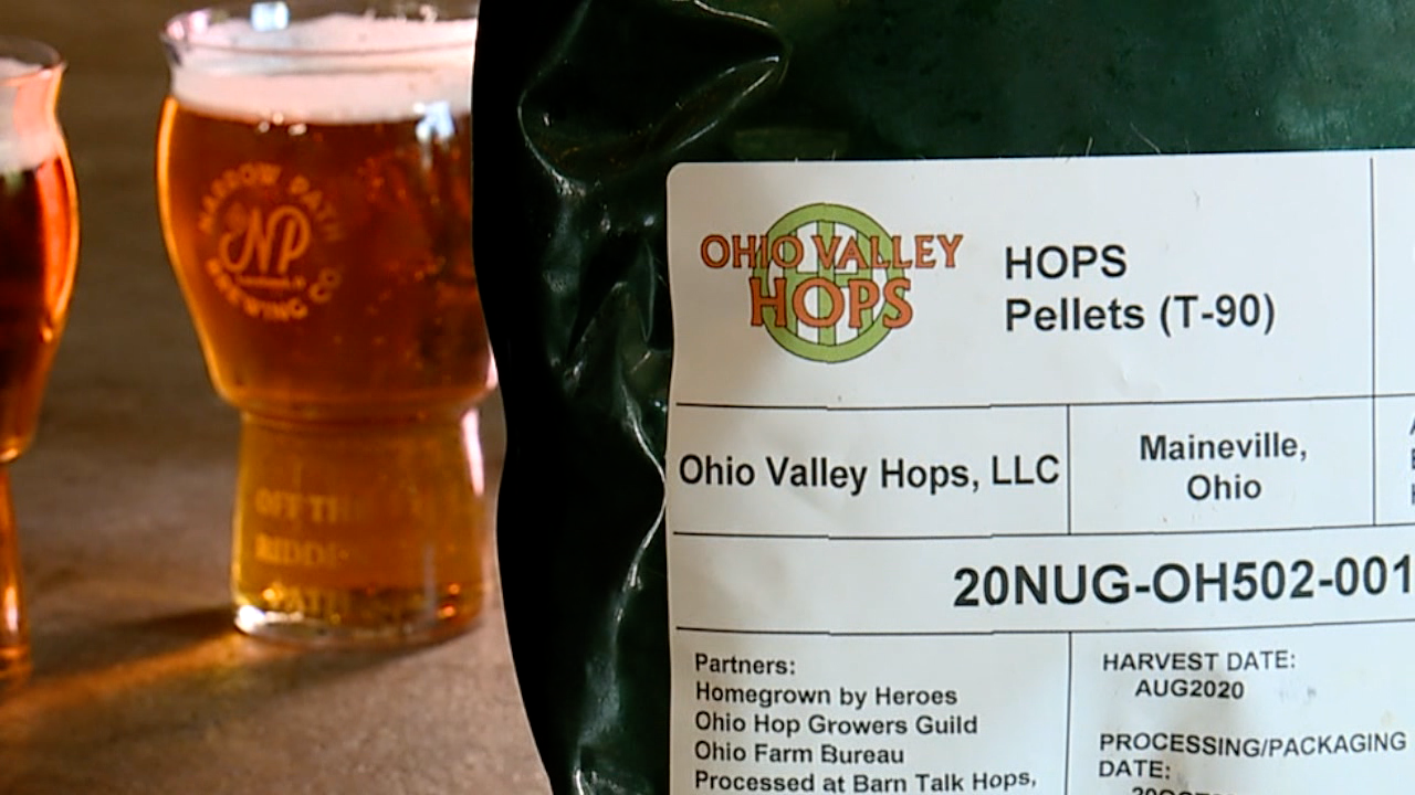 Hops and beer.png