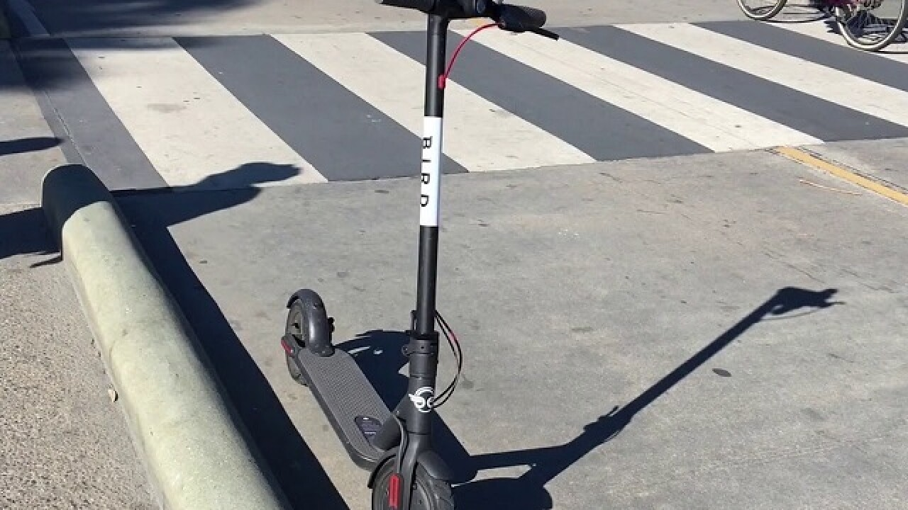 Bird scooters asked to suspend Indy operations