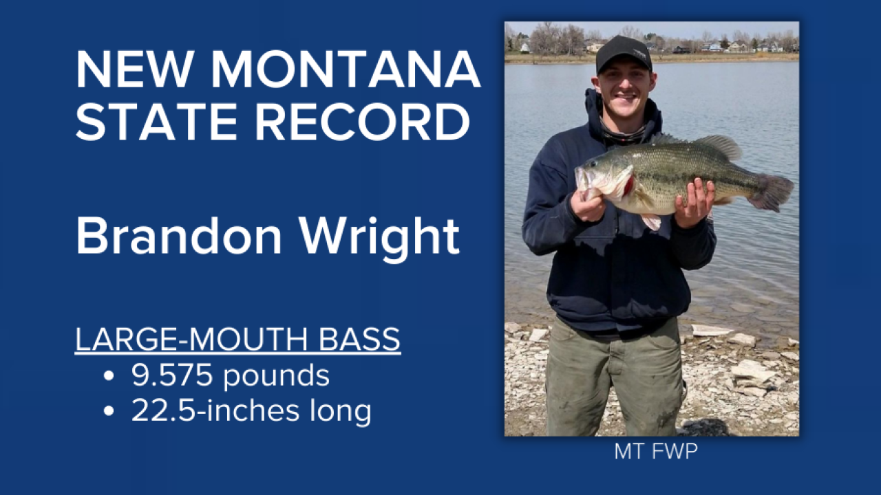 State record large-mouth bass caught in Lake Elmo