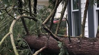 Storm damage in Medina County