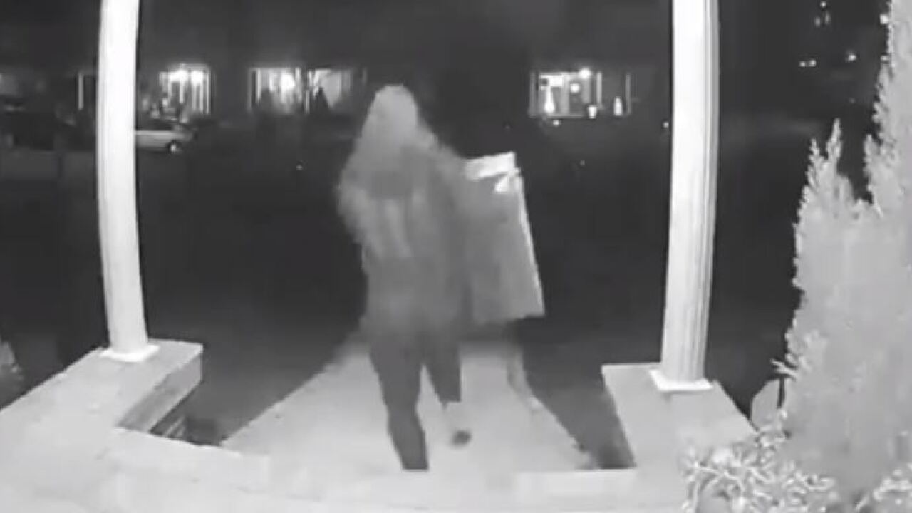 Camera captures porch pirate stealing roughly $1,500 worth of items in Suffolk neighborhood