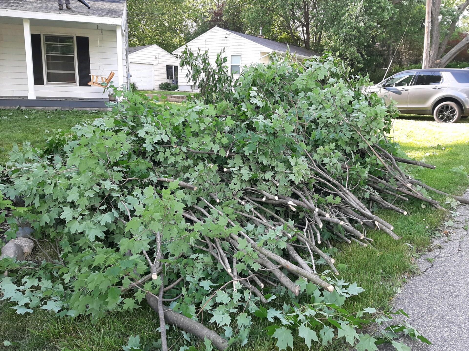 Grand Rapids storm damage 4.jpg