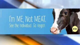 PETA vegan billboard.jpg