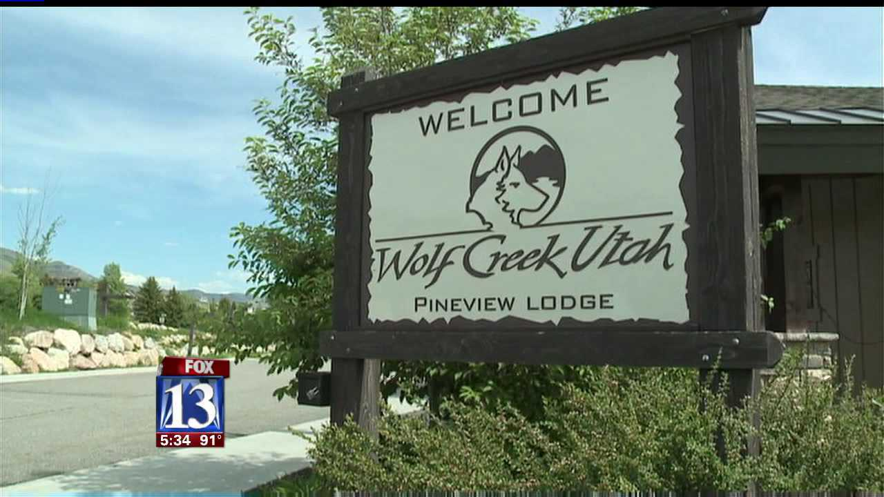 Wolf Creek Resort up for auction