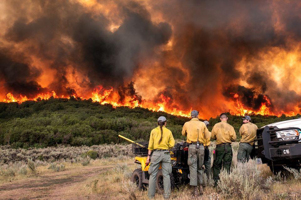 Pine Gulch Fire_Wyoming Hotshots/Pine Gulch Fire 2