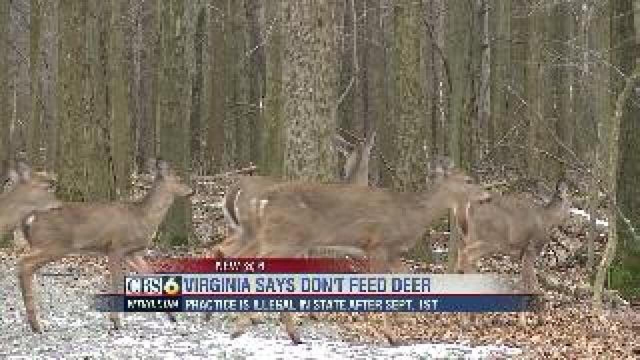 Remember, it's illegal to feed deer this time of year
