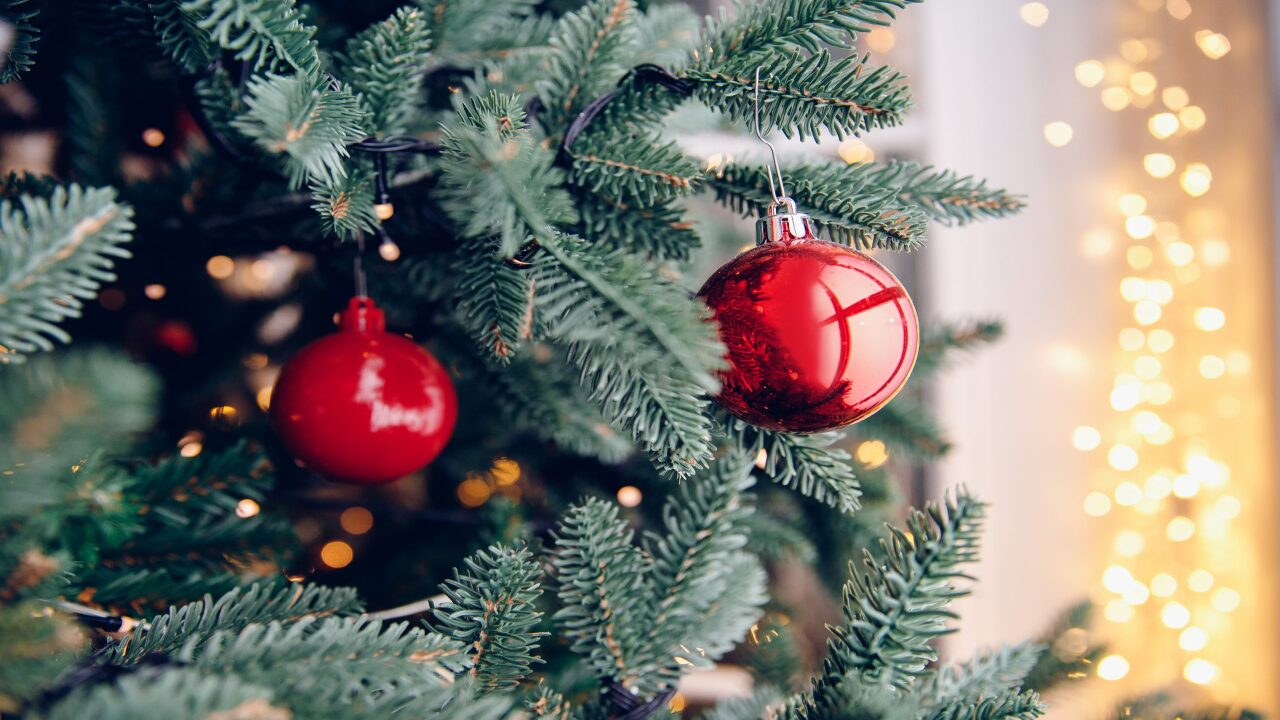 How to get a fresh Christmas tree delivered right to your door this year