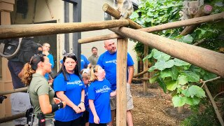 Chronically ill girl's wish granted to see koalas
