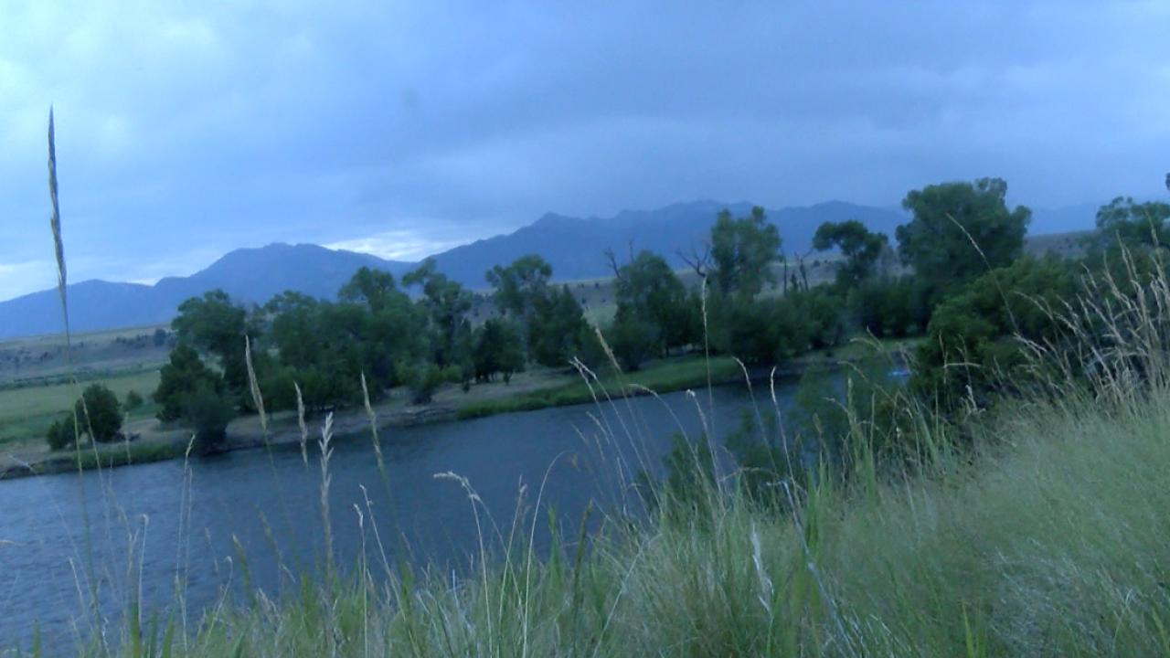 Screen Shot 2021-07-07 at 4.34.30 PM.png