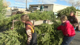 Boy Scouts bring in trees for annual Helena Christmas tree lot