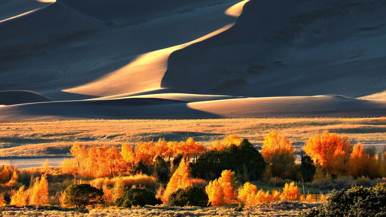 Great Sand Dunes National Park and Preserve in the Fall 5.jpg