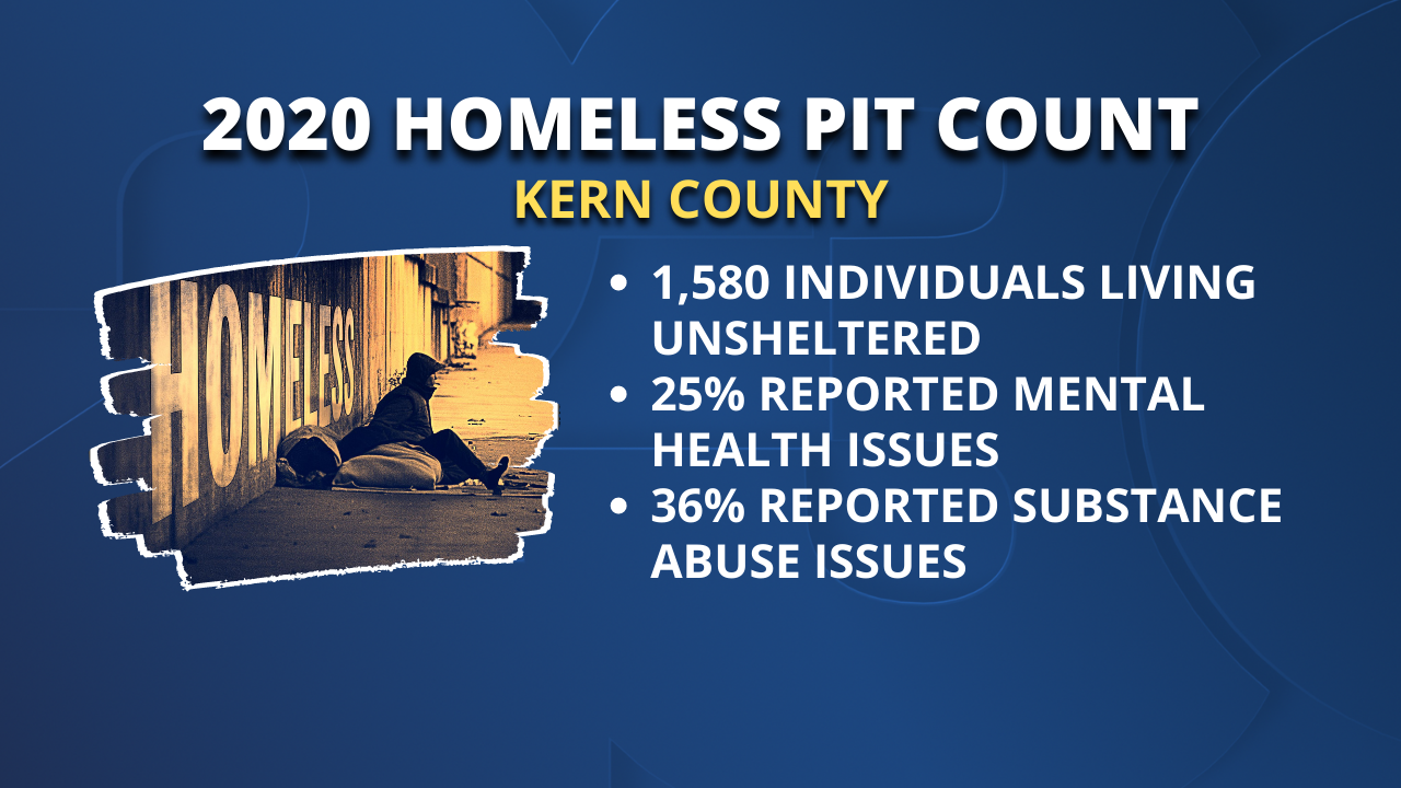 2020 Homeless PIT Count