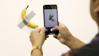 wptv-banana-art.jpg