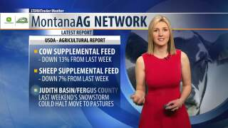 Montana Ag Network Weather: May 1st