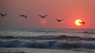 sunrisehot72115.JPG