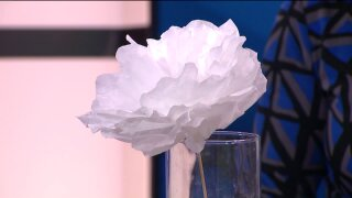 Think spring with these Coffee Filter Flowers