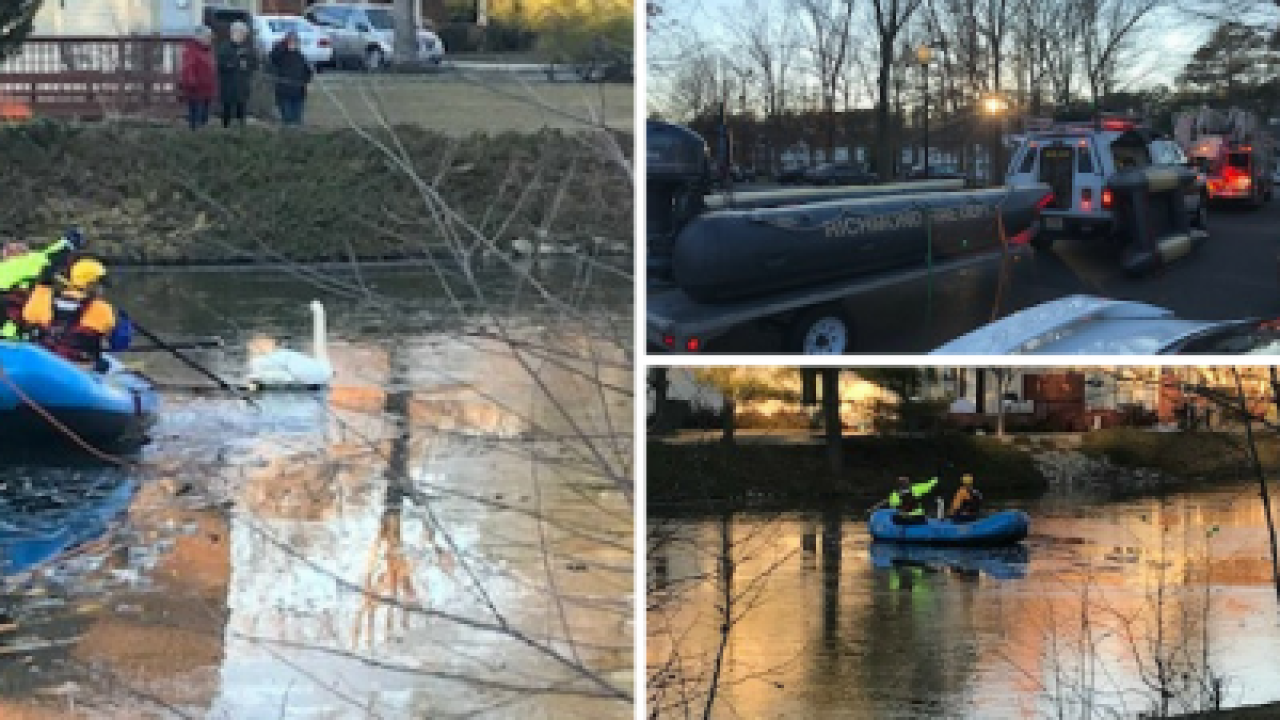 Richmond crews save swan trapped in frozenpond