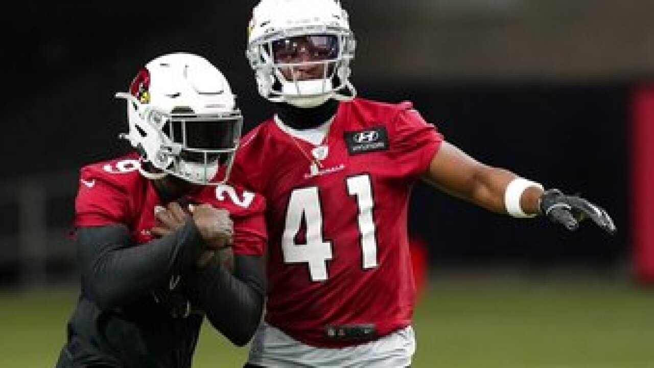 Kenyan Drake was a revelation for the Arizona Cardinals last season, providing a versatile, productive running back after his midseason trade from the Miami Dolphins in October. Photo/AP.