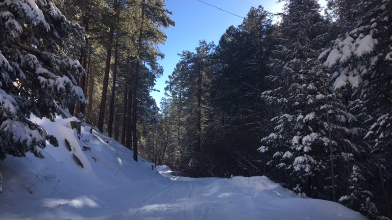 mount lemmon to remain closed during hard freeze