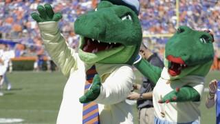 Gator Bait Chant Florida Football