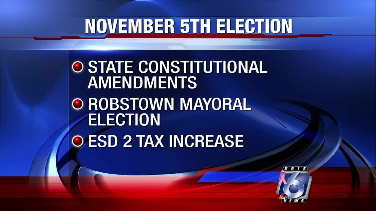 Nov. 5 election amendments