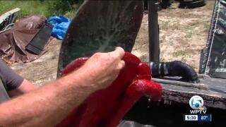 Jensen Beach man claims he can remove toxic algae