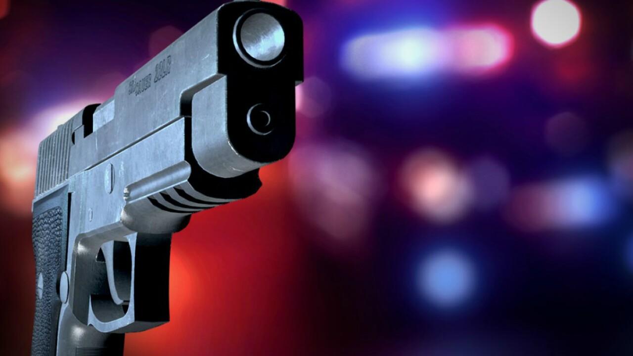 Gun-toting neighbor stands in Henrico street, stops admitted truckthief