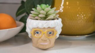 Sassy Sophia Succulent Planter Is A Must-Buy For Any 'Golden Girls' Fan