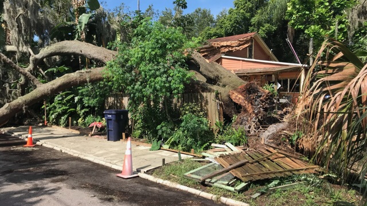 Massive tree falls on home after July 4 storms