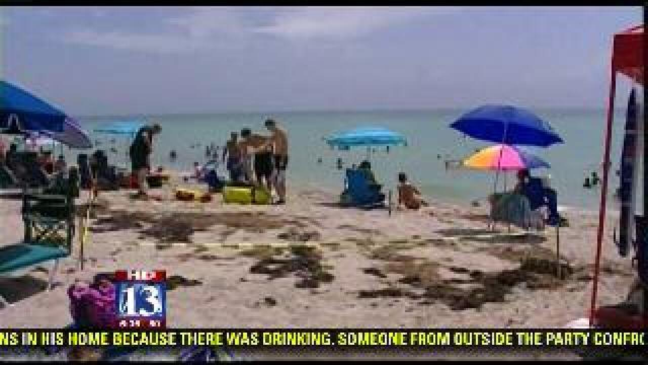 Florida lifeguard says he's been offered his job back