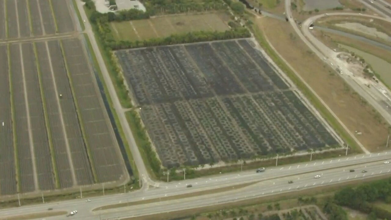 Aerial view of land in West Delray sought to be purchased by Kushner Companies, April 5, 2021