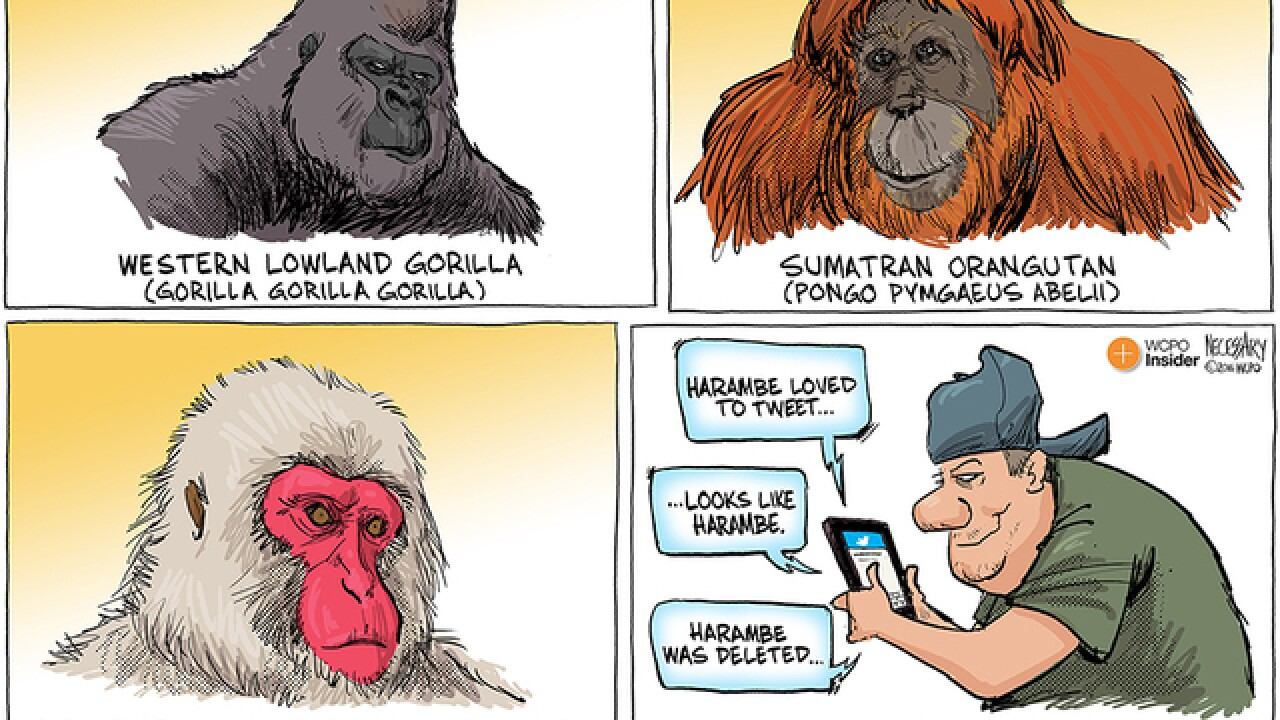 EDITORIAL CARTOON: Primates, evolved and otherwise