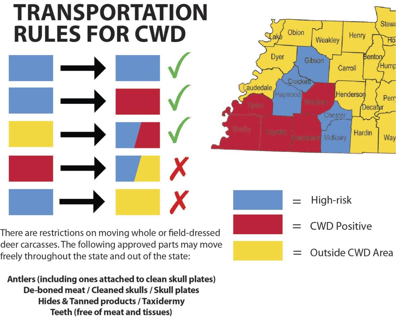 CWD_transport_graphic_6