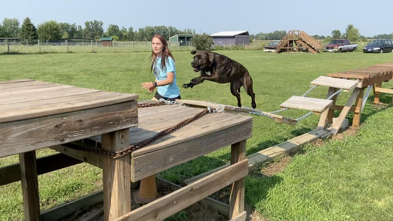 Rachel Clark and her dog Chewy