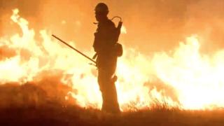 Hart Park fire