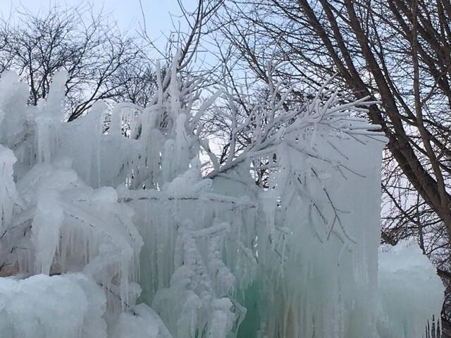 PHOTOS: Veal's Ice Tree