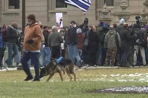 Smaller protest than expected at the state Capitol in Lansing