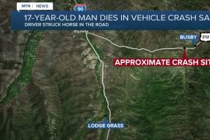 17-year-old man dies in crash after striking a horse on Highway 212 near Busby