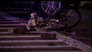 Report: 160 bicyclists killed on Florida roads in 2019
