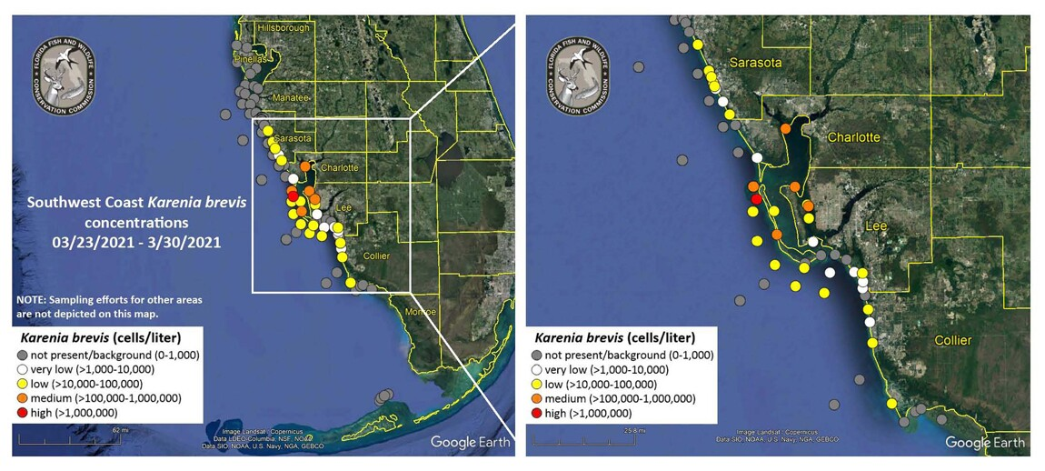 FWC red tide map