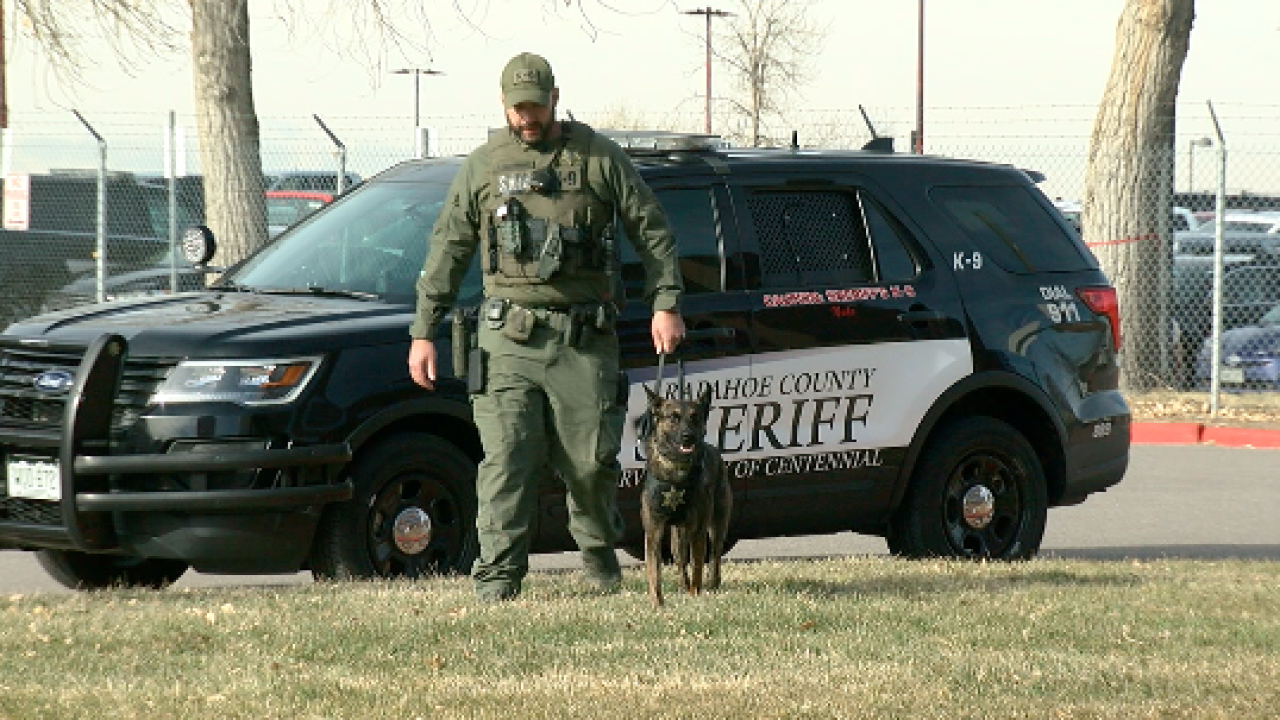 Arapahoe County Sheriff's Office has added a new, four-legged employee